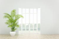 観葉植物が置かれた部屋 CG 11019032114| 写真素材・ストックフォト・画像・イラスト素材|アマナイメージズ