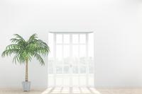 観葉植物が置かれた部屋 CG