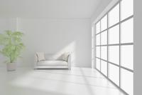 ソファと観葉植物が置かれた部屋 CG 11019032136| 写真素材・ストックフォト・画像・イラスト素材|アマナイメージズ