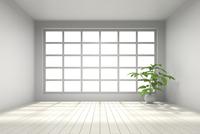 観葉植物が置かれた部屋 CG 11019033144| 写真素材・ストックフォト・画像・イラスト素材|アマナイメージズ