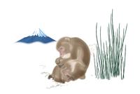 サルの親子と富士山 イラスト