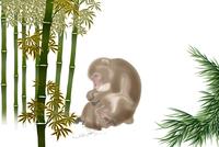 サルの親子と竹林 イラスト