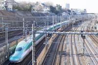 東北新幹線はやぶさとJR線路 日暮里駅