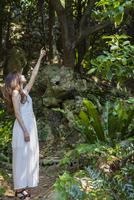 森の中で上を見上げる女性