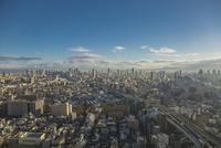 弁天町から大阪駅方面を望む朝の市街地