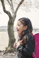 ランドセルを背負った女の子と桜