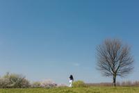 春の公園を走る女の子の後ろ姿