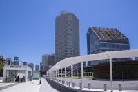 東京メトロ豊洲駅前と豊洲シビックセンター