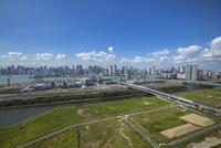 豊洲市場と豊洲、晴海周辺のビル群