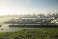 豊洲市場と晴海方面のビル群