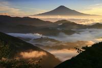 朝焼けの雲海と富士山