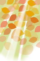 たくさんの葉と光 CG 11019037208| 写真素材・ストックフォト・画像・イラスト素材|アマナイメージズ