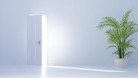 開いた扉と観葉植物 CG 11019037262| 写真素材・ストックフォト・画像・イラスト素材|アマナイメージズ