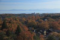 秋の琵琶湖 滋賀県