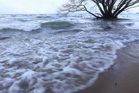 波が立つ冬の琵琶湖 滋賀県
