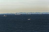 東京湾と貨物船