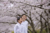 桜の下でほほえむ姉弟 11019038580| 写真素材・ストックフォト・画像・イラスト素材|アマナイメージズ