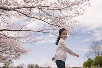 桜の下で遊ぶ笑顔の女の子 11019038587| 写真素材・ストックフォト・画像・イラスト素材|アマナイメージズ