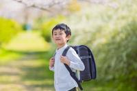 ランドセルを背負った男の子 11019038588| 写真素材・ストックフォト・画像・イラスト素材|アマナイメージズ