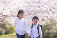 桜の下で手をつなぐ姉弟 11019038590| 写真素材・ストックフォト・画像・イラスト素材|アマナイメージズ