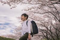ランドセルを背負った男の子と桜 11019038599| 写真素材・ストックフォト・画像・イラスト素材|アマナイメージズ
