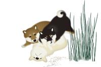 3匹の子犬 イラスト