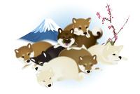子犬たちと富士山と梅 イラスト 11019038920| 写真素材・ストックフォト・画像・イラスト素材|アマナイメージズ