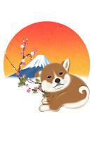 子犬と梅と富士山 イラスト 11019038923| 写真素材・ストックフォト・画像・イラスト素材|アマナイメージズ