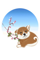 子犬と梅と青空 イラスト 11019038925| 写真素材・ストックフォト・画像・イラスト素材|アマナイメージズ