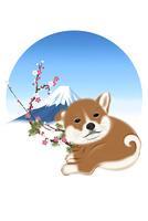 子犬と梅と富士山 イラスト 11019038926| 写真素材・ストックフォト・画像・イラスト素材|アマナイメージズ