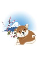 子犬と梅と富士山 イラスト 11019038929| 写真素材・ストックフォト・画像・イラスト素材|アマナイメージズ