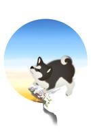 雪の上に立つ子犬と青空 イラスト 11019038930| 写真素材・ストックフォト・画像・イラスト素材|アマナイメージズ