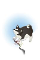 雪の上に立つ子犬 イラスト 11019038931| 写真素材・ストックフォト・画像・イラスト素材|アマナイメージズ