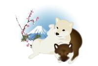 2匹の子犬と富士山と梅 イラスト 11019038935| 写真素材・ストックフォト・画像・イラスト素材|アマナイメージズ
