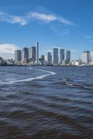 豊洲ぐるり公園から望む晴海埠頭と周辺のビル群 11019038947| 写真素材・ストックフォト・画像・イラスト素材|アマナイメージズ