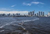 豊洲ぐるり公園から望む晴海埠頭と周辺のビル群 11019039051| 写真素材・ストックフォト・画像・イラスト素材|アマナイメージズ
