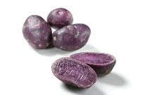 紫いも 11020000718| 写真素材・ストックフォト・画像・イラスト素材|アマナイメージズ