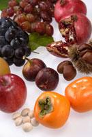 秋の果実 11020001643| 写真素材・ストックフォト・画像・イラスト素材|アマナイメージズ