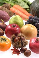 秋の果実 11020001650| 写真素材・ストックフォト・画像・イラスト素材|アマナイメージズ