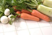 根菜類 11020001878| 写真素材・ストックフォト・画像・イラスト素材|アマナイメージズ