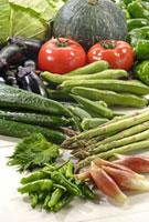 野菜集合 11020002783| 写真素材・ストックフォト・画像・イラスト素材|アマナイメージズ