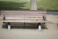 花が置いてあるベンチ 11023002883| 写真素材・ストックフォト・画像・イラスト素材|アマナイメージズ