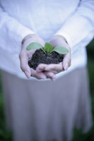 エコロジーイメージ 11023003462| 写真素材・ストックフォト・画像・イラスト素材|アマナイメージズ