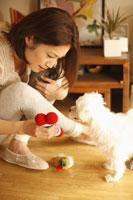 イヌと遊ぶ女性