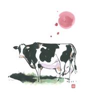 牛 11023012332| 写真素材・ストックフォト・画像・イラスト素材|アマナイメージズ