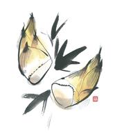 タケノコ 11023012351| 写真素材・ストックフォト・画像・イラスト素材|アマナイメージズ