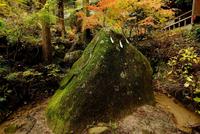 秋の名草巨石群