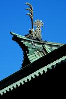 湯島聖堂の鯱鉾