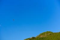 青空とパラグライダー