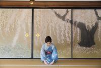 襖絵の前に正座する着物姿の女性 11023018528| 写真素材・ストックフォト・画像・イラスト素材|アマナイメージズ